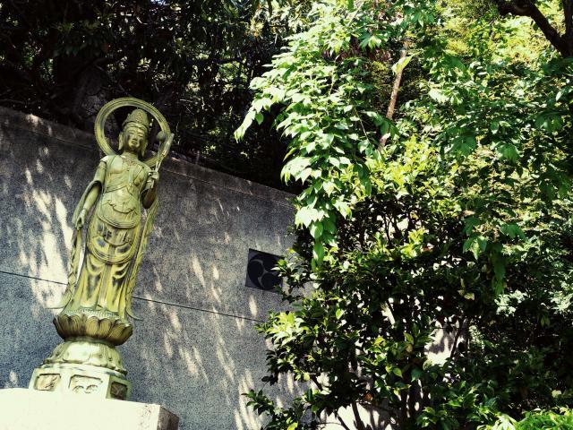 定光寺(神奈川県弘明寺(京急)駅) - 仏像の写真