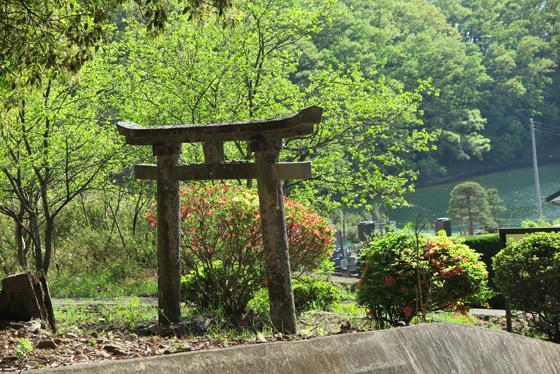 若宮八幡神社の鳥居