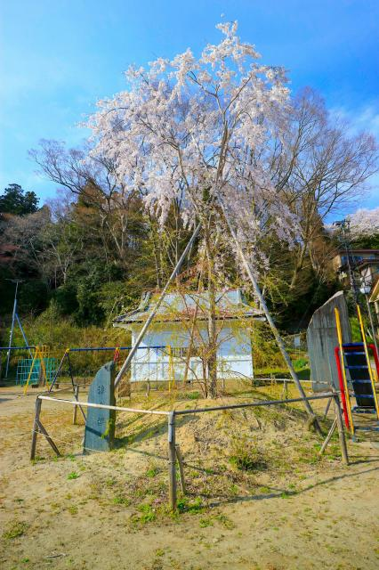 志波彦神社・鹽竈神社の庭園
