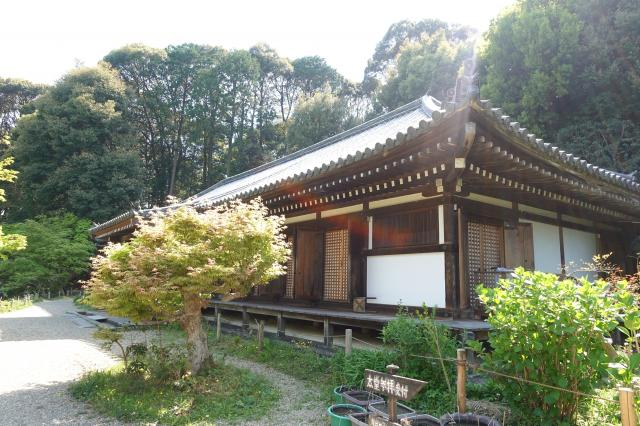京都府浄瑠璃寺の本殿
