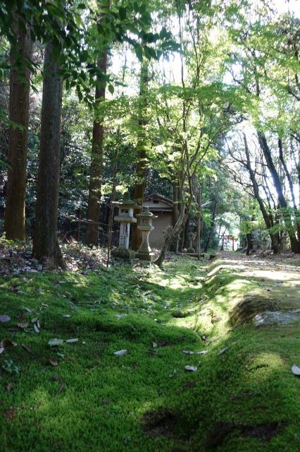 京都府天神神社の建物その他