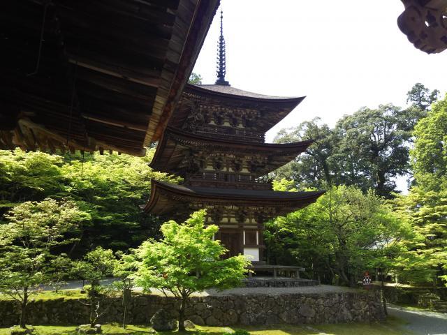 西明寺の塔