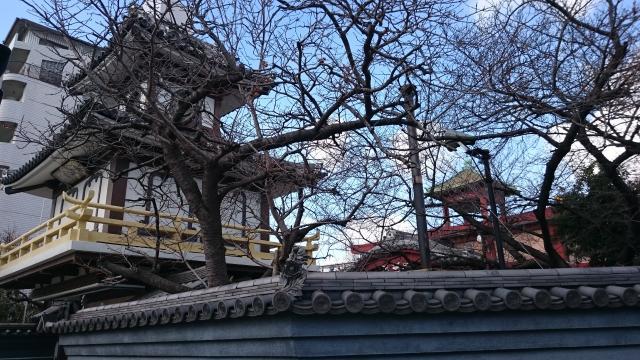 大阪府遍満寺の建物その他