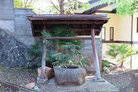 山梨県八雲神社の手水