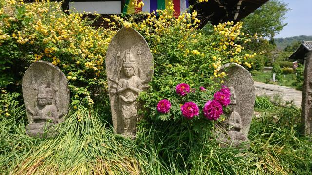 奈良豆比古神社の近くの神社お寺|般若寺