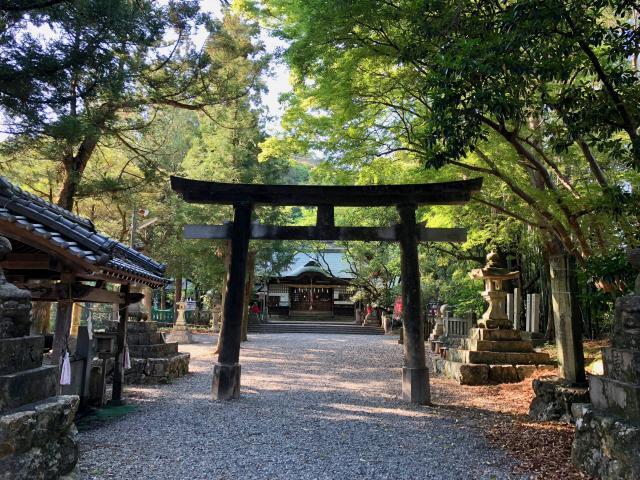 高知県朝倉神社の鳥居