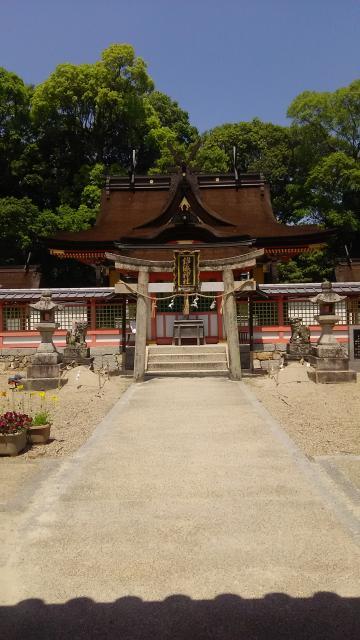 大阪府錦織神社の建物その他
