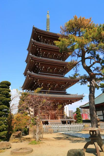 孝勝寺の塔