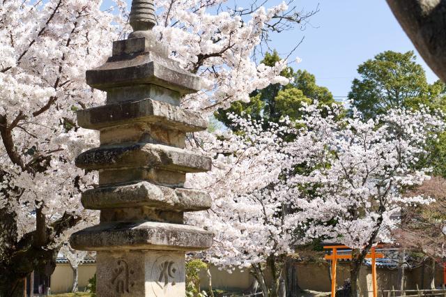 新薬師寺の塔