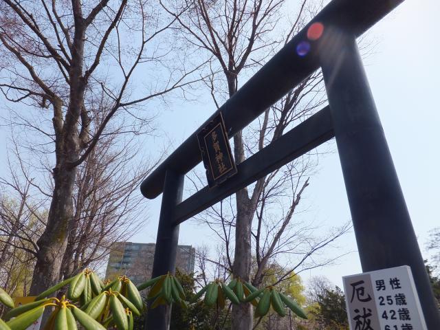 北海道札幌護国神社の鳥居