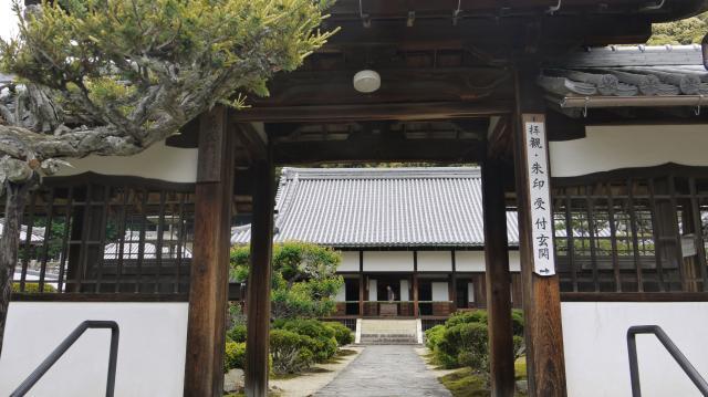 京都府興聖寺の山門