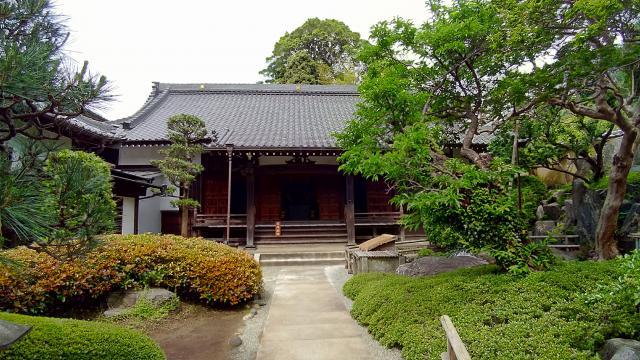 樹源寺(神奈川県保土ケ谷駅) - 本殿・本堂の写真