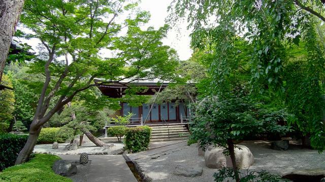 樹源寺(神奈川県保土ケ谷駅) - 庭園の写真