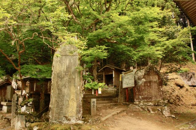 徳島県藤井寺の写真