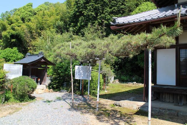 明照寺の庭園