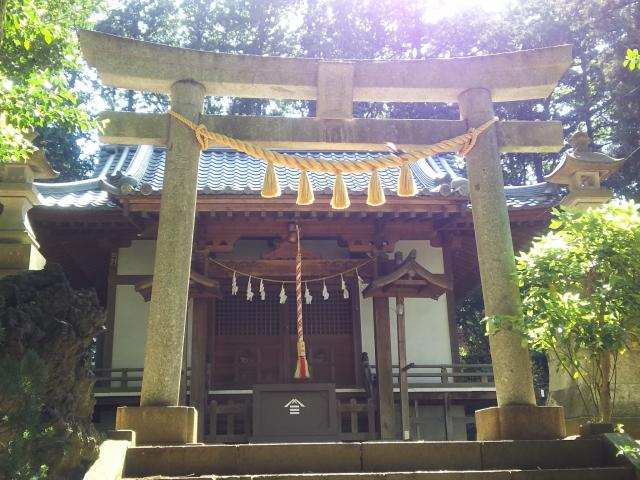 埼玉県瀧宮神社の鳥居