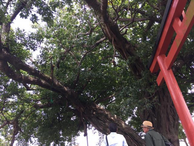 鹿児島県稲荷神社の建物その他