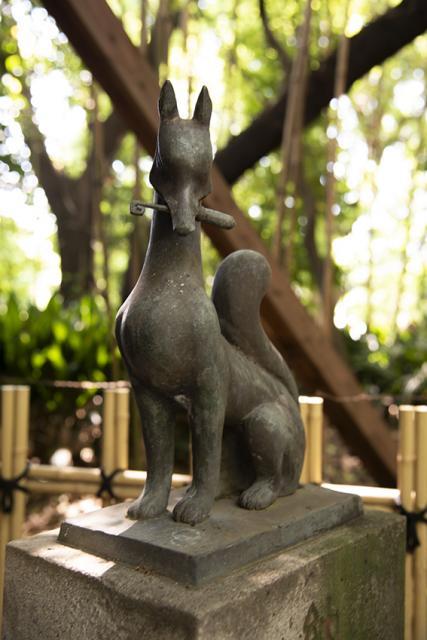 渋谷氷川神社の狛犬