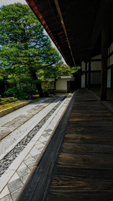 妙心寺の近くの神社お寺|大心院