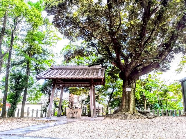 八幡社(渡内八幡社)の手水