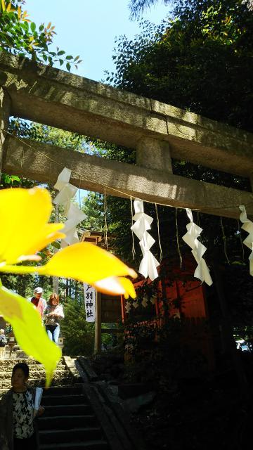 栃木県岩戸別神社の鳥居