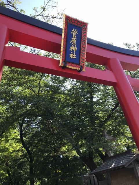 東京都菅原神社の鳥居
