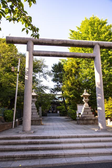 桜神宮の鳥居