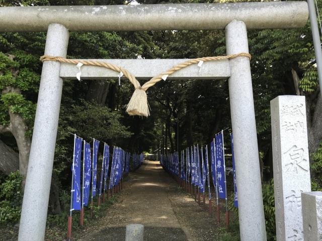 茨城県泉神社の鳥居