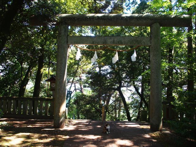 唐澤山神社の鳥居