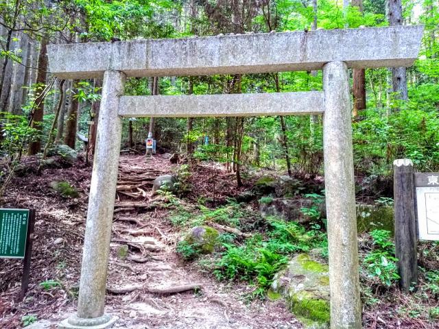 愛知県猿投神社の鳥居