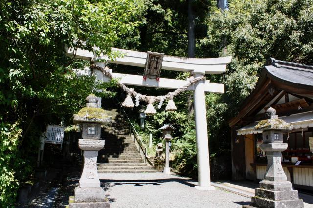 富山県護國八幡宮の鳥居