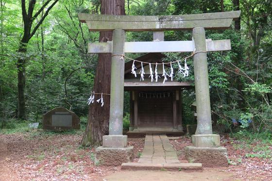 埼玉県鳩峯八幡神社の鳥居