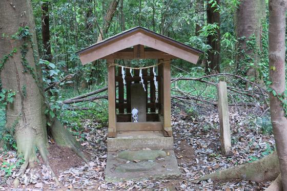 埼玉県鳩峯八幡神社の末社
