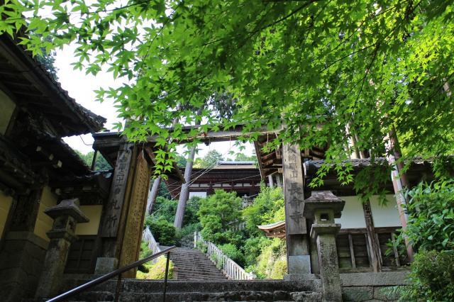 滋賀県長命寺の山門