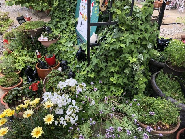 今戸神社の庭園