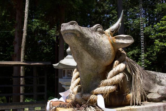滋賀県天神社の狛犬