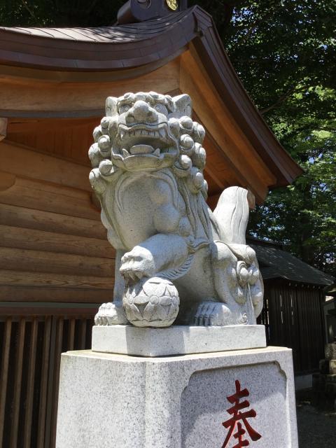 多賀神社の狛犬