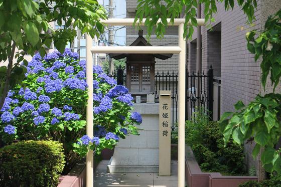 花姫稲荷神社の鳥居