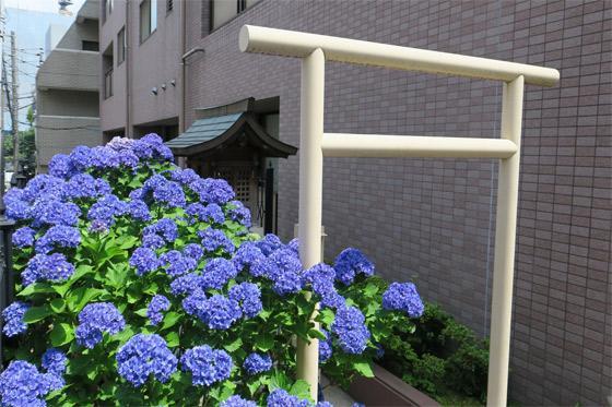 花姫稲荷神社の自然