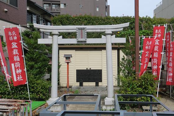 盆栽稲荷神社の鳥居