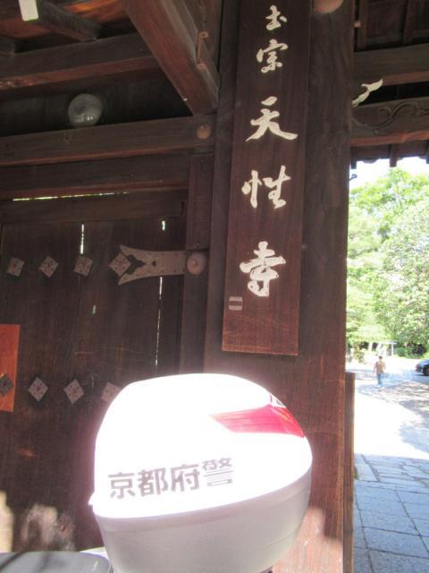 本能寺の近くの神社お寺|天性寺