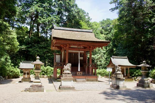 滋賀県苗村神社の本殿