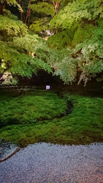 京都府光明寺瑠璃光院の庭園