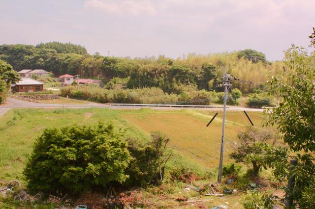 鹿児島県園林寺跡の景色