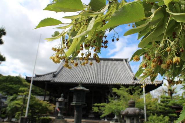 京都府穴太寺の本殿
