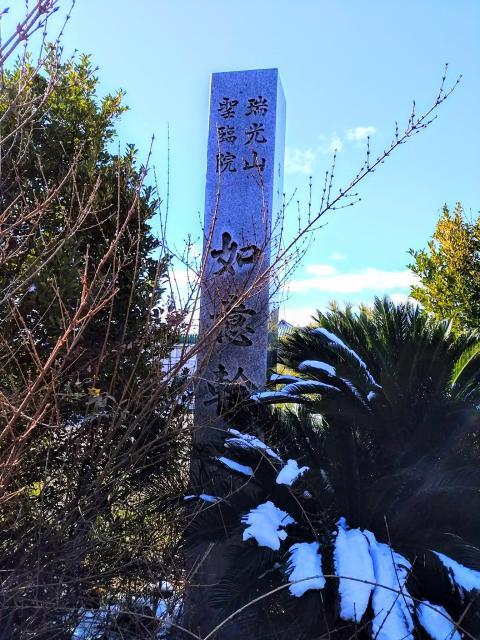 秋葉社の近くの神社お寺|瑞光山 聖臨院 如意輪寺