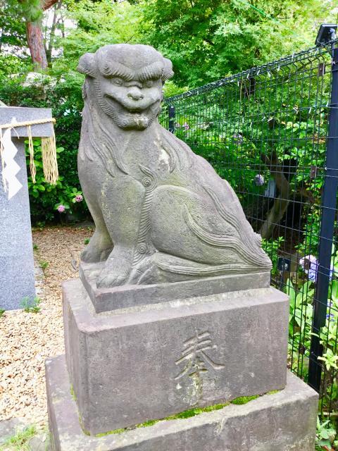 立石熊野神社(東京都青砥駅) - 狛犬の写真