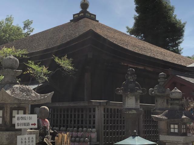 和歌山県慈尊院の本殿