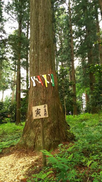 栃木県岩戸別神社の庭園