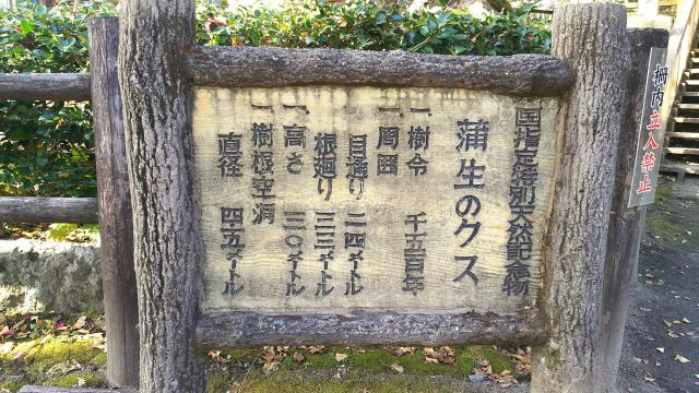 鹿児島県蒲生八幡神社の歴史
